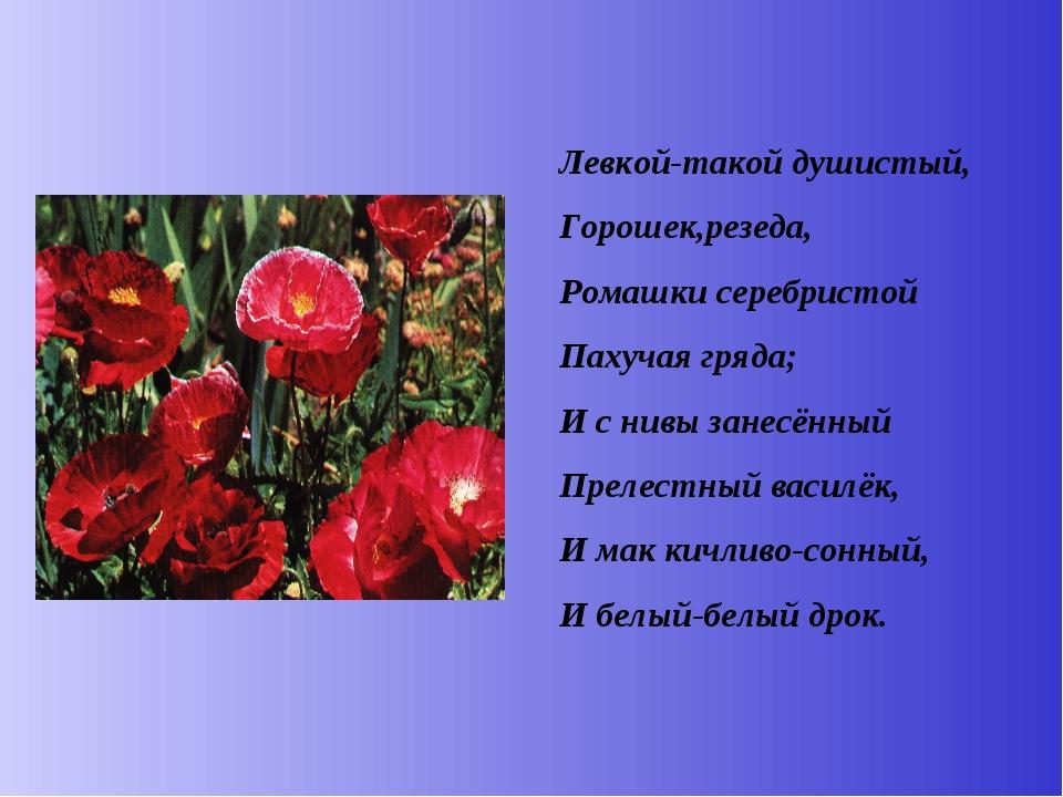 Левкой-такой душистый, Горошек,резеда, Ромашки серебристой Пахучая гряда; И с...