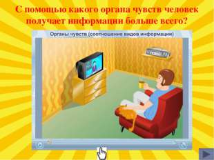 С помощью какого органа чувств человек получает информации больше всего?