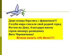 Даже птицы боролись с фашизмом!!!Голуби мира спасали свой родной город Ростов