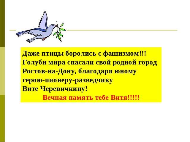 Даже птицы боролись с фашизмом!!!Голуби мира спасали свой родной город Ростов...