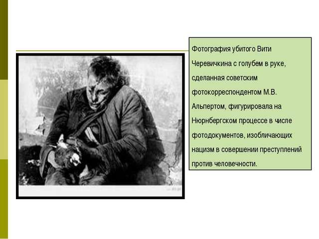 Фотография убитого Вити Черевичкина с голубем в руке, сделанная советским фот...