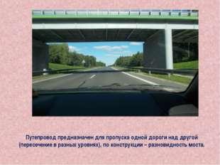 Путепровод предназначен для пропуска одной дороги над другой (пересечение в р