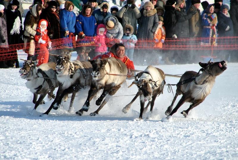 Празднование Дня оленевода начали с Быстринского района РИА …