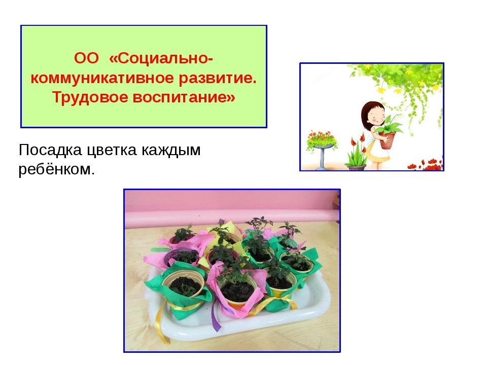 ОО «Социально-коммуникативное развитие. Трудовое воспитание» Посадка цветка...