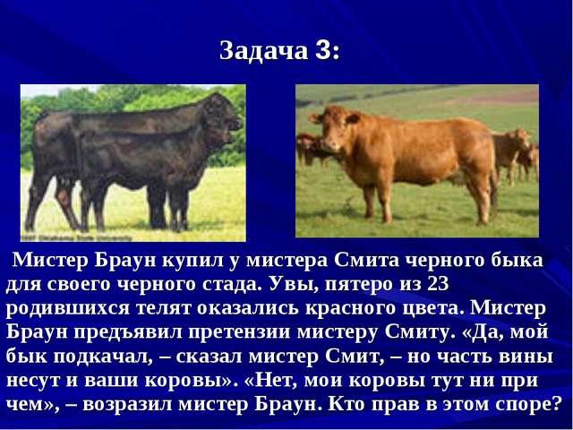 Задача 3: Мистер Браун купил у мистера Смита черного быка для своего черного...