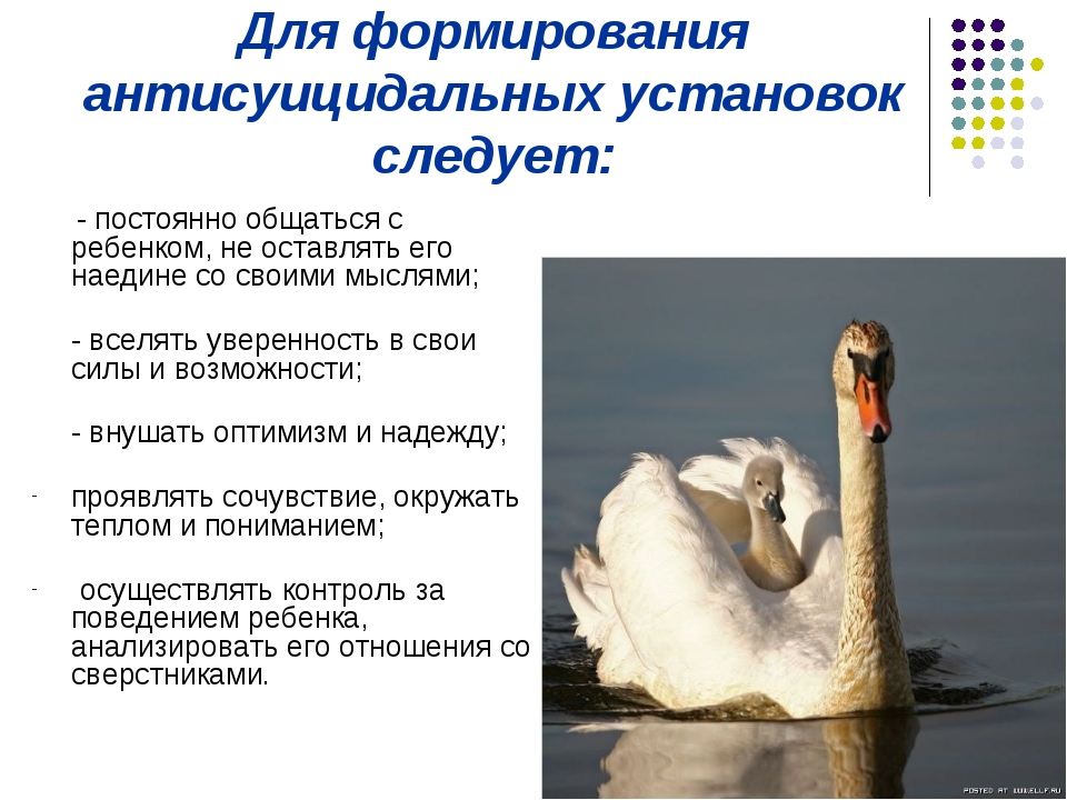 Для формирования антисуицидальных установок следует: - постоянно общаться с р...