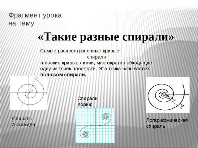 Фрагмент урока на тему «Такие разные спирали» Спираль Архимеда Логарифмическа...