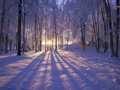 C:\Users\user\Desktop\winter-scene-053.jpg