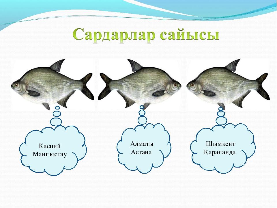 Каспий Манғыстау Алматы Астана Шымкент Қарағанда