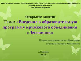 Муниципальное казенное образовательное учреждение дополнительного образования