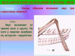 Задача 1. Каким образом возникает звук при стрекотании сверчка? Ответ: Звук