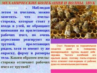 Задача 2. Наблюдая летом за пчелами, можно заметить. что пчелы-сторожа, кото