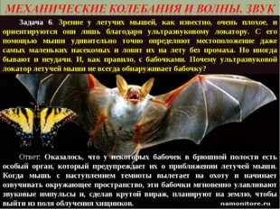 Задача 6. Зрение у летучих мышей, как известно, очень плохое, и ориентируютс