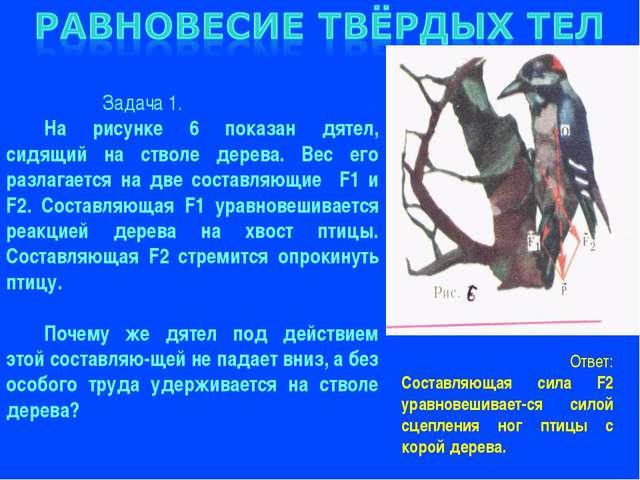 Задача 1. На рисунке 6 показан дятел, сидящий на стволе дерева. Вес его разл...