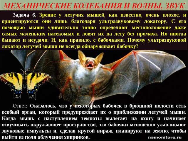 Задача 6. Зрение у летучих мышей, как известно, очень плохое, и ориентируютс...