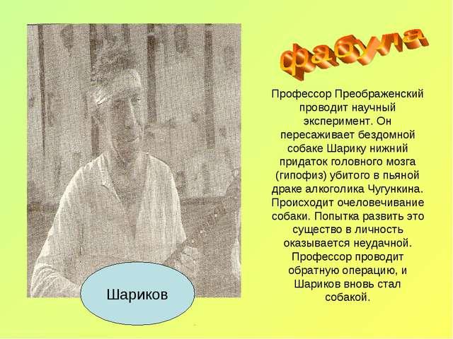 Профессор Преображенский проводит научный эксперимент. Он пересаживает бездом...