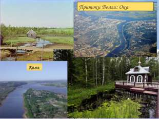 Мы определили: Географическое положение на физической карте РФ Размер Волги И