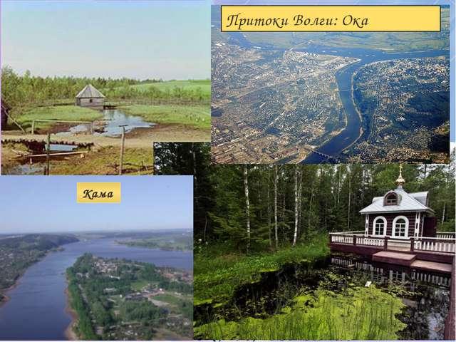 Мы определили: Географическое положение на физической карте РФ Размер Волги И...