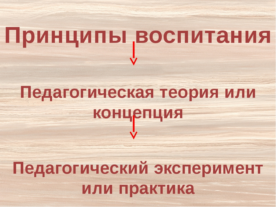 Педагогический эксперимент или практика Принципы воспитания Педагогическая те...