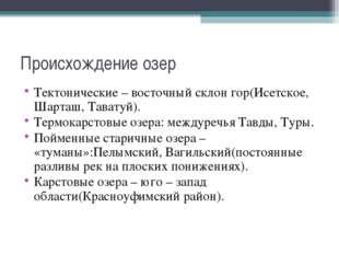 Происхождение озер Тектонические – восточный склон гор(Исетское, Шарташ, Тава