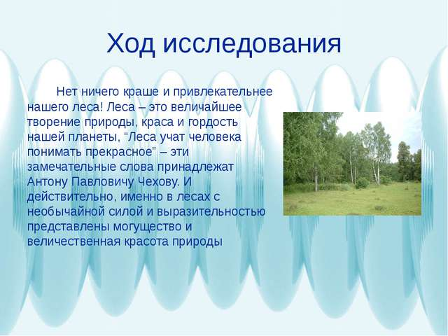 Ход исследования Нет ничего краше и привлекательнее нашего леса! Леса – это в...