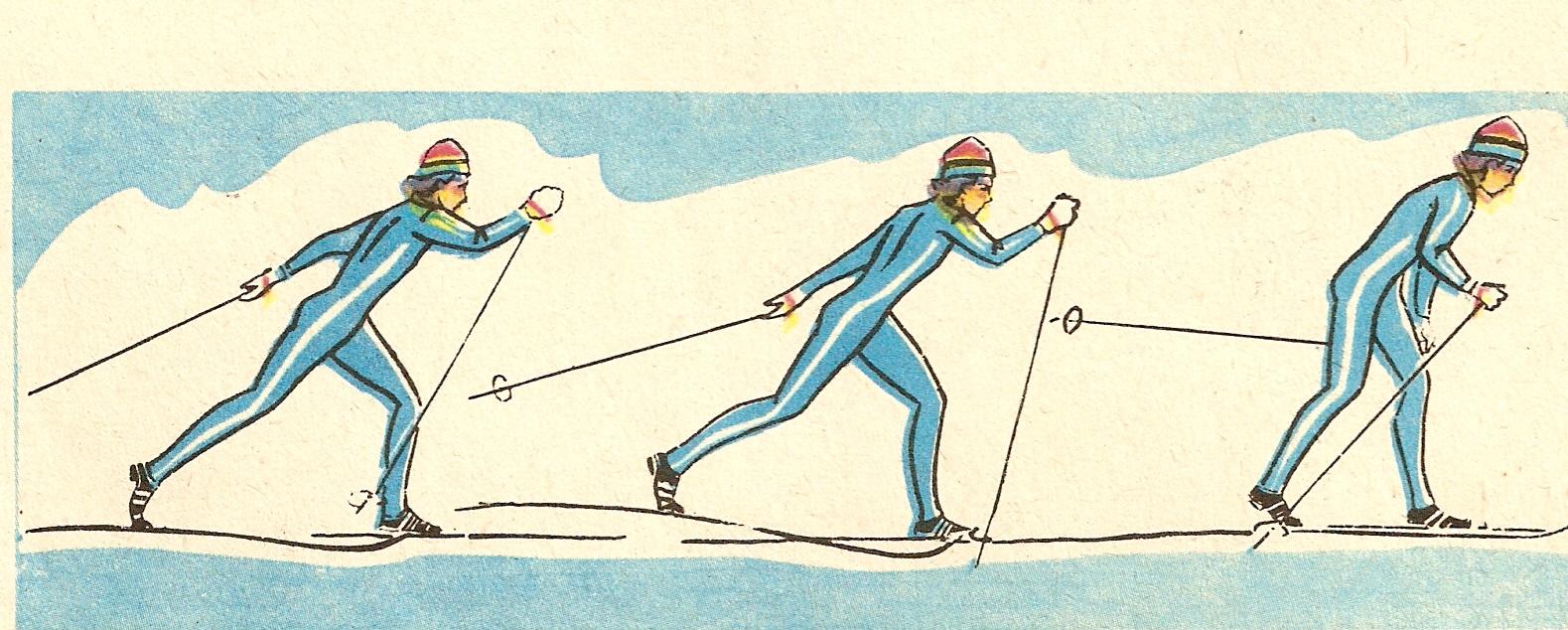 пути лыжные хода с картинками фриске одна