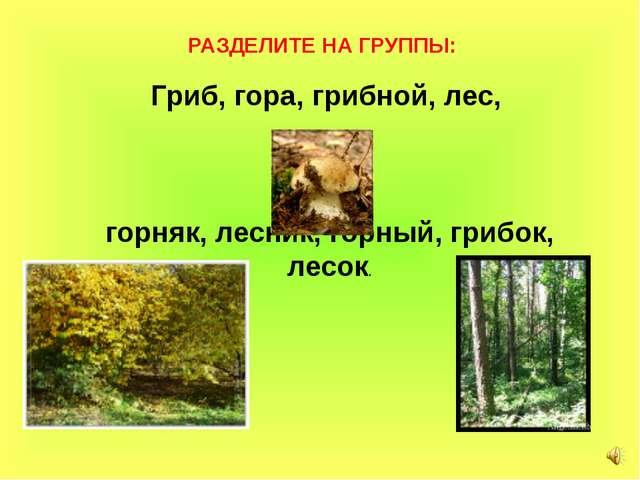 Гриб, гора, грибной, лес, горняк, лесник, горный, грибок, лесок.  РАЗДЕЛ...