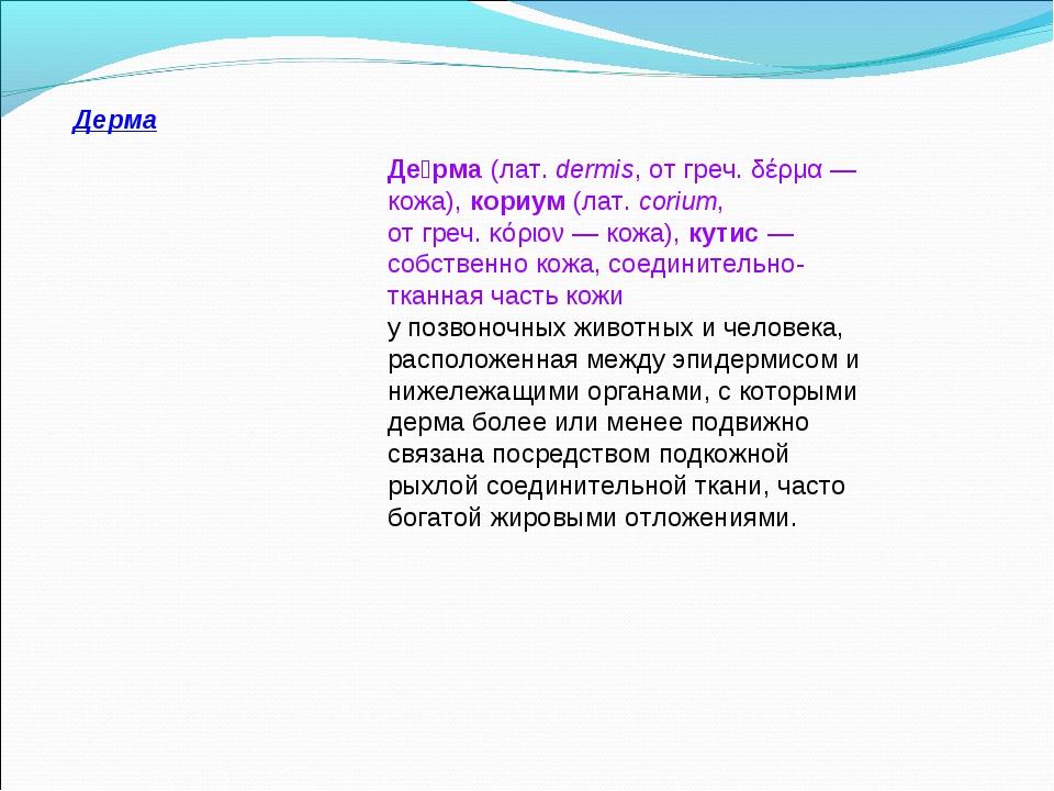 Де́рма(лат.dermis, отгреч.δέρμα— кожа),кориум(лат.corium, отгреч.κό...