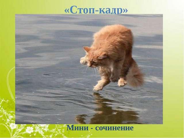 «Стоп-кадр» Мини - сочинение