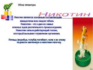 Никотин является основным составляющим ввеществом всех видов табака. Нникоти