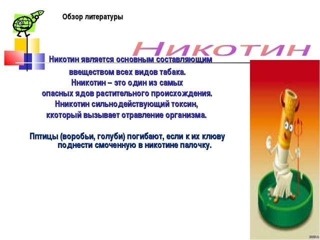 Никотин является основным составляющим ввеществом всех видов табака. Нникоти...