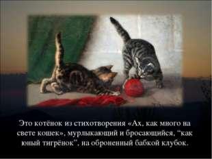 Это котёнок из стихотворения «Ах, как много на свете кошек», мурлыкающий и бр