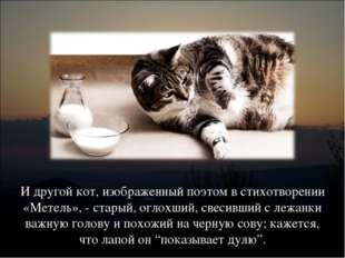 И другой кот, изображенный поэтом в стихотворении «Метель», - старый, оглохши