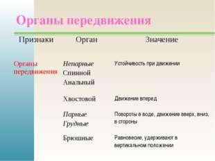 Органы передвижения Признаки Орган Значение Органы передвижения Непарные Спин