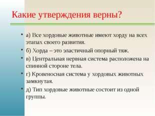Какие утверждения верны? а) Все хордовые животные имеют хорду на всех этапах