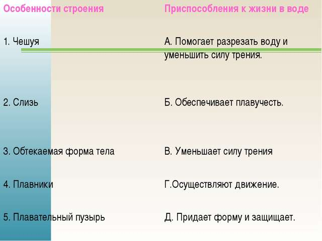 Особенности строения Приспособления к жизни в воде 1. Чешуя А. Помогает разре...