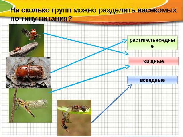 На сколько групп можно разделить насекомых по типу питания? растительноядные...