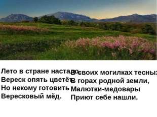 Лето в стране настало, Вереск опять цветёт, Но некому готовить Вересковый мёд