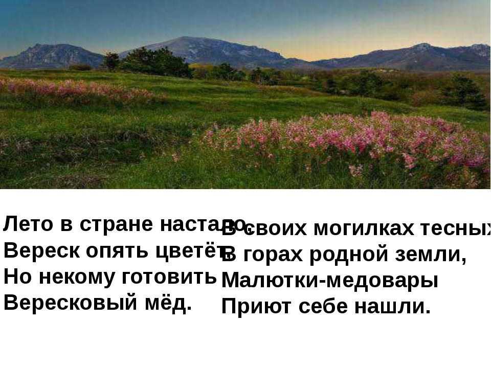 Лето в стране настало, Вереск опять цветёт, Но некому готовить Вересковый мёд...