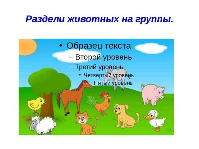 Раздели животных на группы.