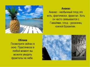 Ананас Ананас - необычный плод это есть, фактически, фрактал. Хоть он часто с