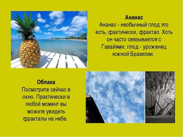 Ананас Ананас - необычный плод это есть, фактически, фрактал. Хоть он часто с...