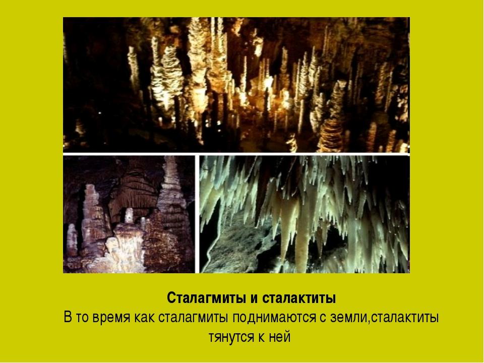 Сталагмиты и сталактиты В то время как сталагмиты поднимаются с земли,сталакт...