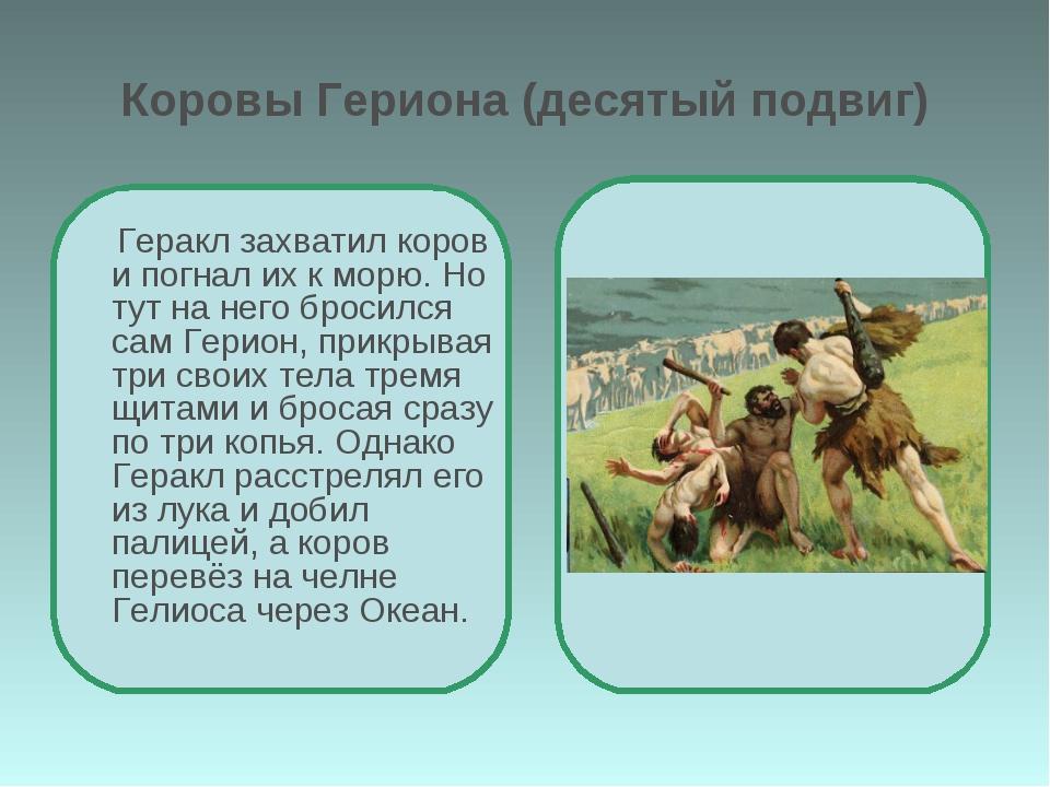 Коровы Гериона (десятый подвиг) Геракл захватил коров и погнал их к морю. Но...