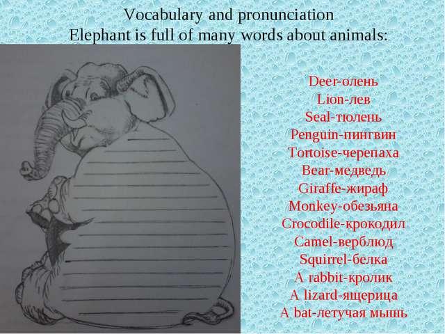 Deer-олень Lion-лев Seal-тюлень Penguin-пингвин Tortoise-черепаха Bear-медвед...
