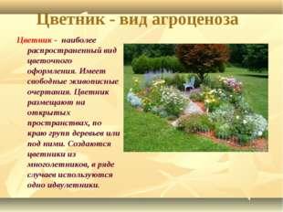 Цветник - вид агроценоза Цветник - наиболее распространенный вид цветочного о