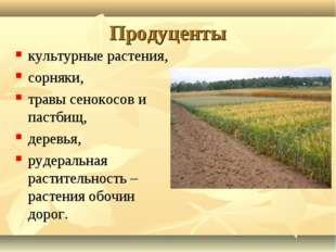 Продуценты культурные растения, сорняки, травы сенокосов и пастбищ, деревья,