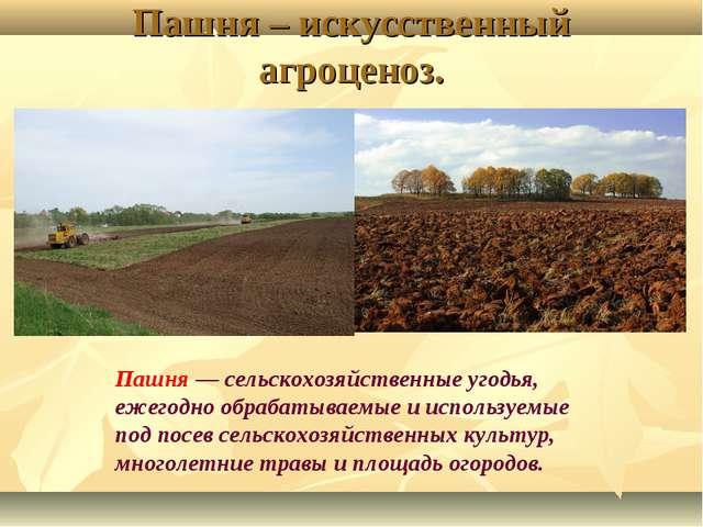 Пашня – искусственный агроценоз. Пашня — сельскохозяйственные угодья, ежегодн...