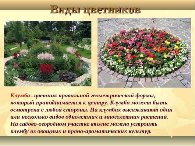 Виды цветников Клумба - цветник правильной геометрической формы, который прип...