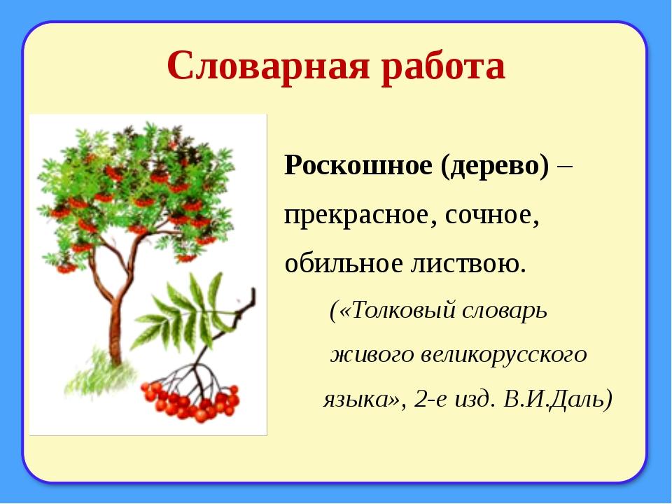 Словарная работа Роскошное (дерево) – прекрасное, сочное, обильное листвою. (...